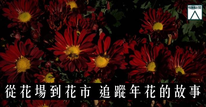 20170126_flower